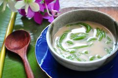 Traditional Iced Dessert Cendol in Bowl. With wooden spoon on banana leaf royalty free stock photo