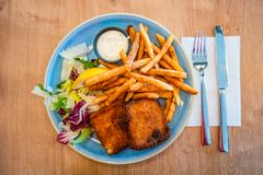 Traditional Icelandic grilled fish and chips, and salad, summer royalty free stock photo