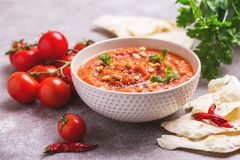 Indian Tomato Rasam with lentil, mint, cilantro and cashew Royalty Free Stock Photo