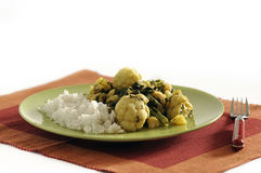 Traditional Indian dish - Saag Aloo Royalty Free Stock Photos