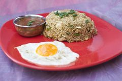 Traditional indian food Chicken Fried Rice. With egg Royalty Free Stock Photo
