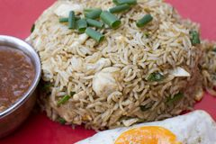 Traditional indian food Chicken Fried Rice. With egg closeup Stock Photography