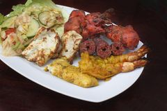Traditional indian grilled mixed meat Royalty Free Stock Photos