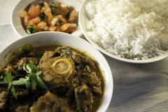 A Traditional Indian Lamb Curry with rice and salad Royalty Free Stock Image