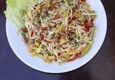 Traditional indian salad. Traditional indian food with nuts and vegetables Royalty Free Stock Image