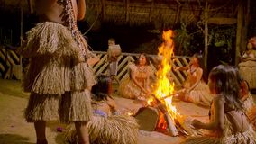 Traditional indigenous ceremony in the jungle by night. Around the fire in Ecuador stock footage