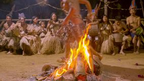 Traditional indigenous ceremony in the jungle by night. With kids running around the fire in Ecuador stock footage