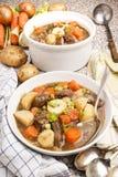 Traditional irish lamb stew with potato, carrot, celery and spr. Home made traditional irish lamb stew with potato, carrot, celery and spring onion in a deep Royalty Free Stock Image