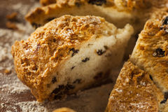 Traditional Irish Soda Bread Royalty Free Stock Photography