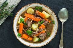 Traditional Irish stew - top view. Traditional Irish stew with lamb, potatoes, carrot and barley - top view Royalty Free Stock Image