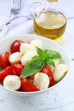 Traditional Italian Caprese Salad Stock Photos