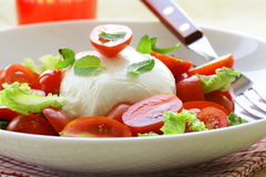 Traditional Italian Caprese Salad Stock Image
