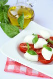 Traditional Italian Caprese Salad mozzarella Stock Images