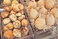 Traditional Italian cheeses scamorza and caciocavallo Stock Photos
