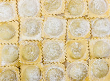 Traditional italian floured ravioli Stock Images