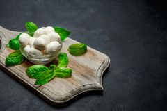 Traditional Italian Mozzarella cheese and basil on dark concrete. Background Royalty Free Stock Images