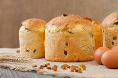 Traditional italian panettone holiday biscuit cake with raisins on vintage textile Stock Images