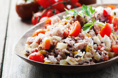 Traditional italian rice salad with tuna and vegetables stock photo