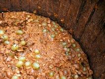 Traditional Italian winemaking Stock Photos