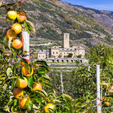 Traditional Italy - castles and gardens of Valle d'Aosta - Sarre Royalty Free Stock Photos