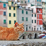 Traditional italy - fishing vilage Royalty Free Stock Photography