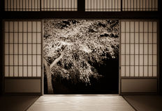 Traditional Japanese background of rice paper doors and a cherry tree with an aged photo look Stock Photo