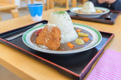 Traditional Japanese curry omelet rice with batter-fried fish Stock Images