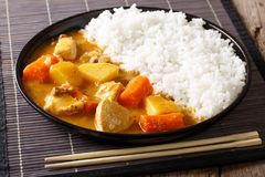 Traditional Japanese food: curry and rice close-up. horizontal Royalty Free Stock Image