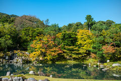 Traditional Japanese garden in early autumn, Kyoto Royalty Free Stock Images