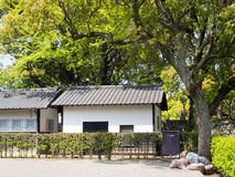 Traditional Japanese garden Royalty Free Stock Photo