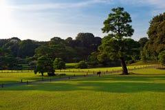 Traditional japanese garden in Tokyo. Japan Stock Image