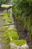 Traditional japanese garden water channel Royalty Free Stock Photo