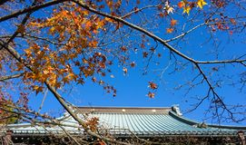 Traditional Japanese house roof with sky. Japanese roof with blue sky Stock Photos