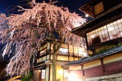 Traditional japanese house with sakura tree Royalty Free Stock Photo