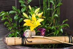 Traditional Japanese ikebana Stock Photography