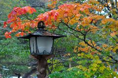 Traditional japanese lantern in rainy autumn. After a rain, light reflection can be seen on a traditional japanese lantern in a japanese garden in autumn Royalty Free Stock Photography
