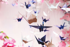 Traditional Japanese origami on strings in the background graphics and sakura Royalty Free Stock Photo
