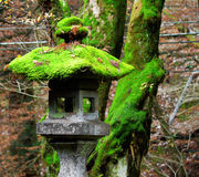 Traditional japanese stone lantern Royalty Free Stock Images