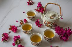 Traditional Japanese tea set filled with green tea and fresh red cheery blossom against white marble back. Traditional cherry blossom decorated Japanese tea set stock image