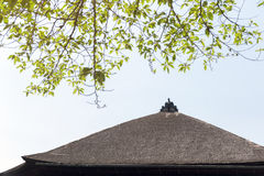 Traditional Japanese thatched roof building with branch of tree in foreground Royalty Free Stock Image