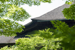 Traditional Japanese thatched roof building with branch of tree in foreground Royalty Free Stock Photo