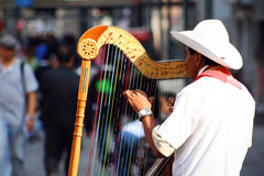Traditional jarocho musician from Veracruz playing for tourists Stock Images