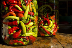 Traditional Jarred yellow, green, red, hot peppers. Stock Photo