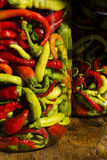 Traditional Jarred yellow, green, red, hot peppers. Stock Photos
