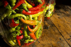 Traditional Jarred yellow, green, red, hot peppers. High resolution image Royalty Free Stock Photography