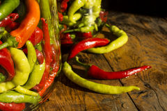 Traditional Jarred yellow, green, red, hot peppers. Royalty Free Stock Photography
