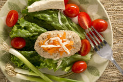 Traditional Jewish Passover Dish Gefilte Fish Stock Image