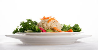 Traditional Jewish passover food gefilte fish Stock Images