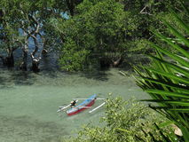 Traditional Jukung fishing boat in a mangrove at Bunaken Island, North-Sulawesi, Indonesia Stock Photography