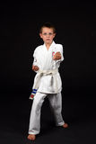 Traditional karate boy Royalty Free Stock Image